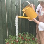 Upcycled Watering-Can Sun-Catcher