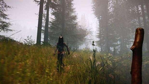 מתוך המשחק: The Forest