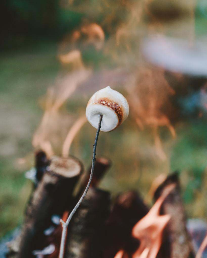 kids roasting marshmallows over fire pit