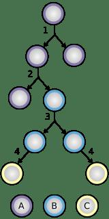 Celulele stem au proprietatea de a se divide, rezultand 2 celule stem identice, dar si proprietatea de a se diferentia in alte tipuri de celule.