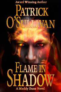 Flame in Shadow Cover