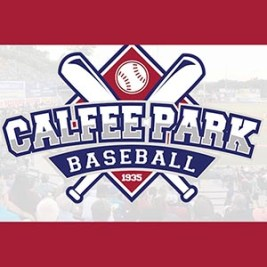Motor Mile Field at Calfee Park voted best rookie-level ballpark in America for second straight year