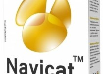 Navicat Premium Licence key Free Download