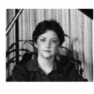 Janice L. Van Derbur-Certified Judge