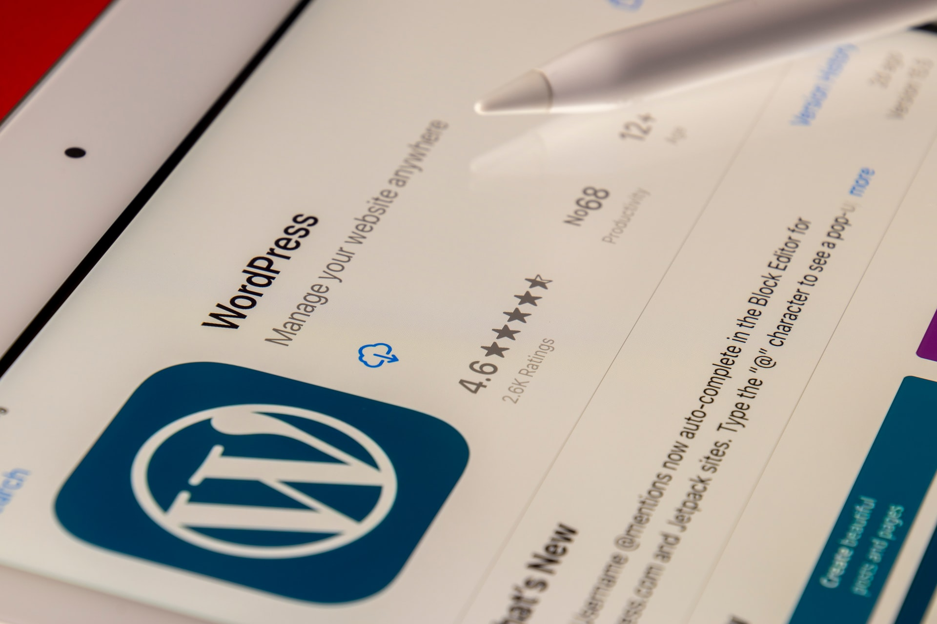 FEATURE: Why is WordPress Perfect For Small Businesses? - PC Tech Magazine