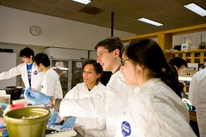 Princeton student researchers working at the Lewis Thomas lab