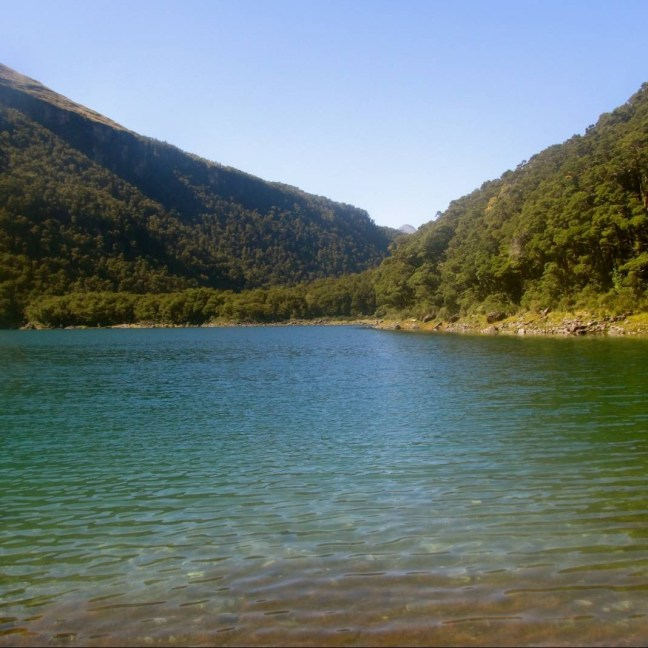 Lake Marian in Fiordland National Park, NZ! My friend Hema Lochan '16 took this photo during her semester abroad.
