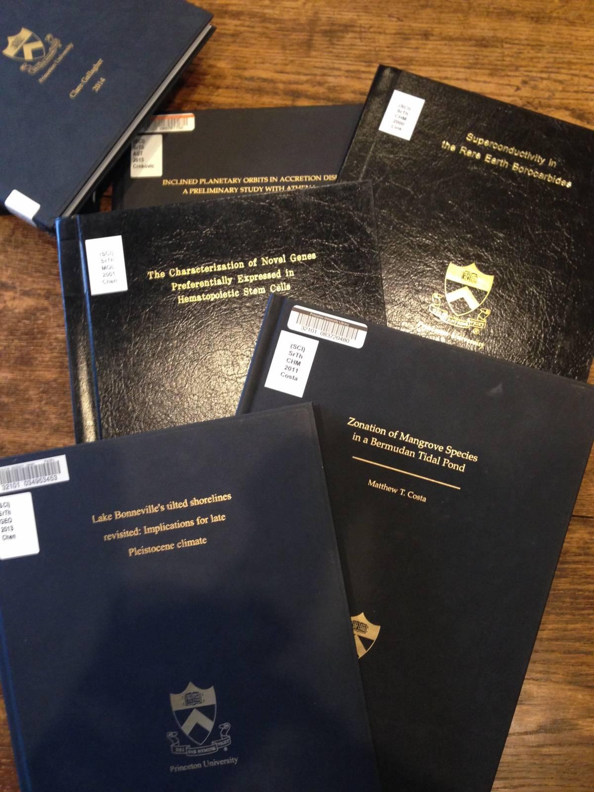 princeton sociology thesis