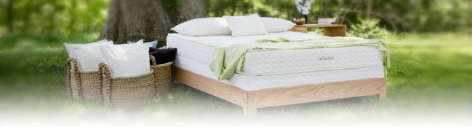 Organic Usda Certified Natural Latex Mattresses Are Made Of Foam Rubber Not Synthetic Bio Hybrid Or Blended