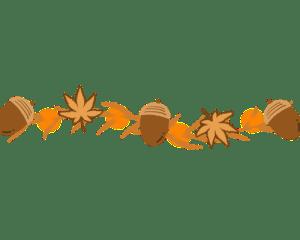 木の実ライン1