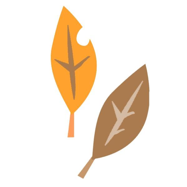 秋のイラスト枯れ葉木の実など5種pd Present Pd Present
