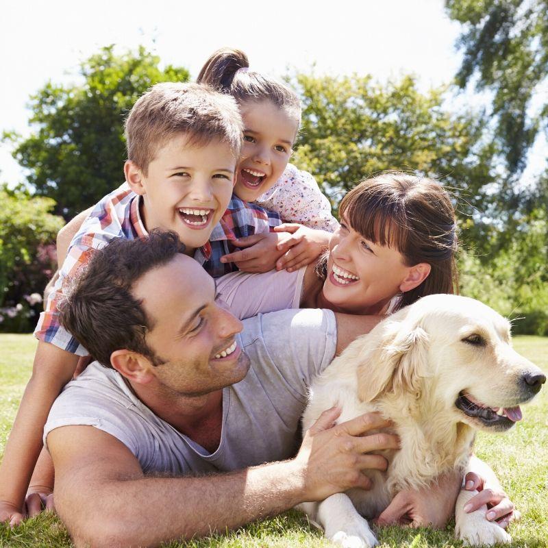 family enjoying the park