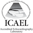 ICAEL no background