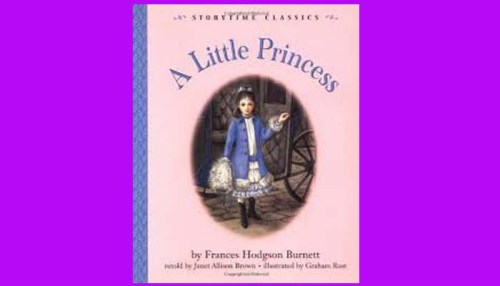 The Little Princess Book