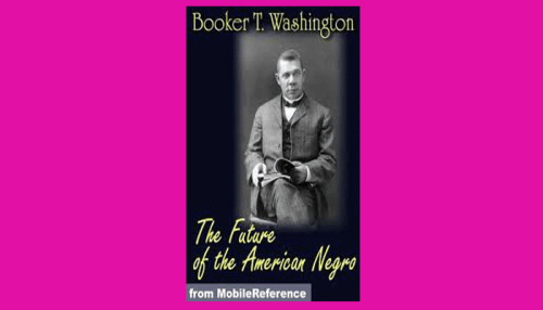 the future of the american negro pdf