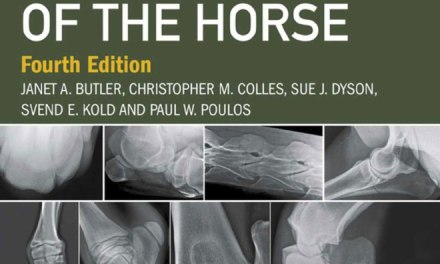 Clinical Radiology of the Horse 4th Edition PDF Download