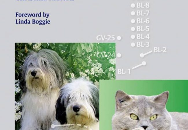 Acupuncture for dogs and cats a pocket atlas
