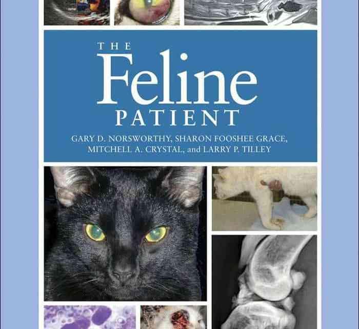 The Feline Patient Fourth Edition PDF