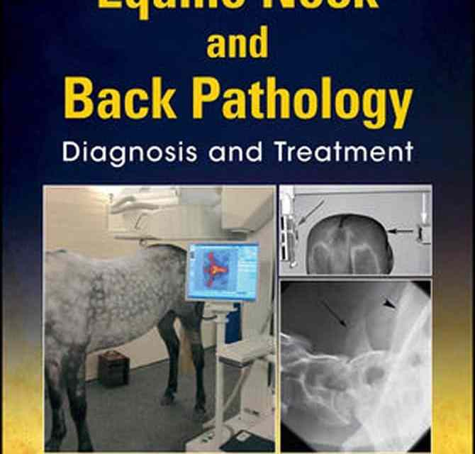Equine Neck and Back Pathology – Diagnosis and Treatment PDF
