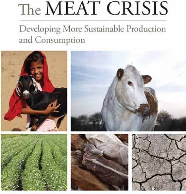 The Meat Crisis – Developing More Sustainable Production and Consumption