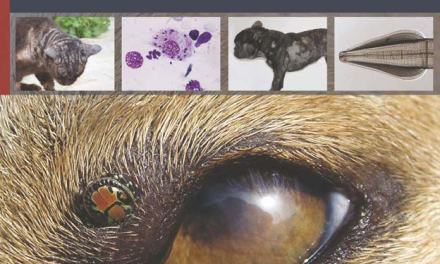 Textbook of Clinical Parasitology in Dogs and Cats PDF