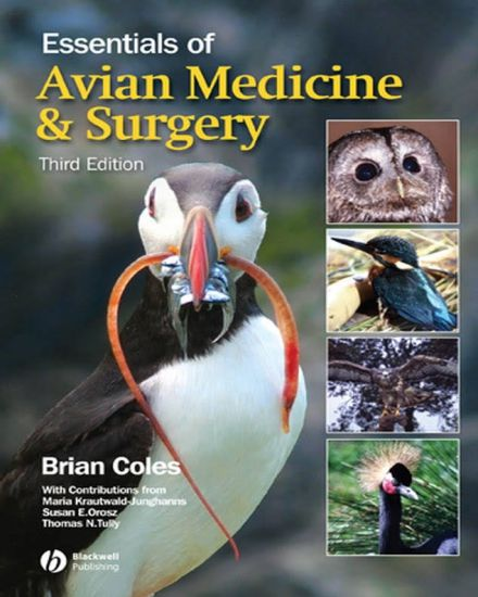 Essentials of Avian Medicine and Surgery 3rd Edition