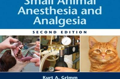Essentials of Small Animal Anesthesia and Analgesia 2nd Edition