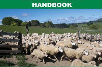 The International Sheep and Wool Handbook Second Edition