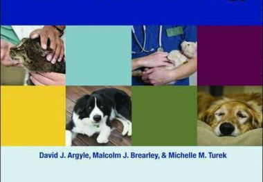 Decision Making in Small Animal Oncology