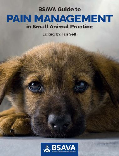 Pain Management in Small Animal Practice