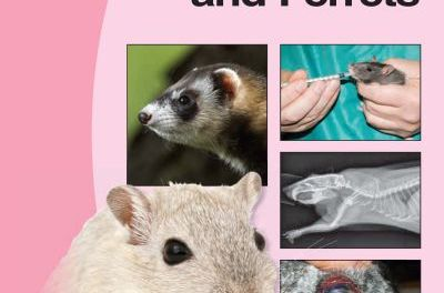 Manual of Rodents and Ferrets PDF