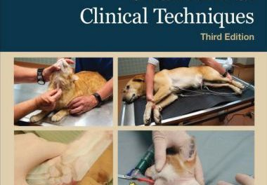 Small Animal Clinical Techniques 3rd Edition