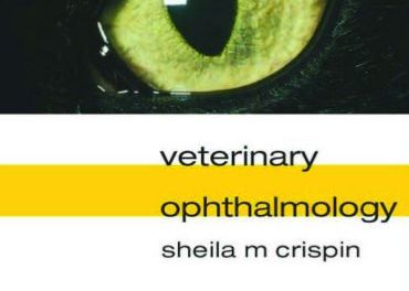 Notes on Veterinary Ophthalmology 1st Edition
