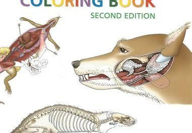 Saunders Veterinary Anatomy Coloring Book 2nd Edition