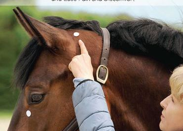 Acupressure for Horses, Hands-On Techniques to Solve Performance Problems and Ease Pain and Discomfort