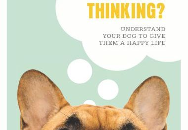 What's My Dog Thinking, Understand Your Dog to Give Them a Happy Life