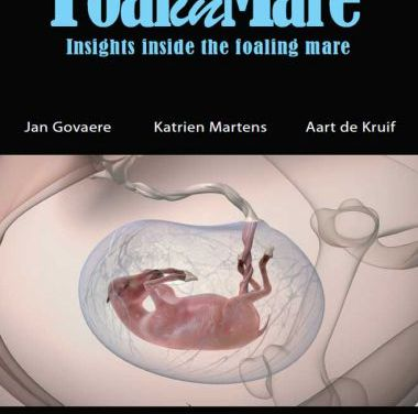 FoalinMare DVD Insights Inside the Foaling Mare 4th Edition