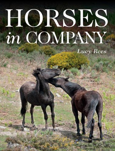 Horses in Company 1st Edition