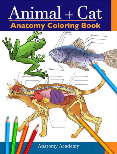 Animal Cat Anatomy Coloring Book 1st Edition