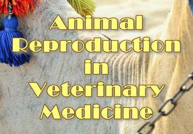 Animal Reproduction in Veterinary Medicine