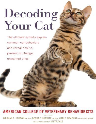 Decoding Your Cat – American College of Veterinary Behaviorists