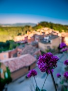 A blooming flower and the village below #bokeh