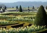 Formal flowering-Versailles, France