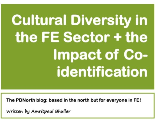 Title Slide: Cultural Diversity in the FE Sector and the Impact of Co-Identification