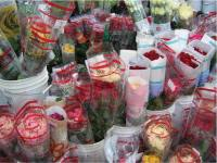 Cut Flower Distribution Software