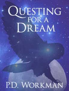 dream nano cover2
