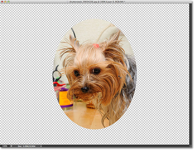 The image after centering the image inside the clipping mask. Image © 2012 Photoshop Essentials.com