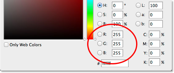 Choosing white for the type color in the Color Picker. Image © 2014 Photoshop Essentials.com