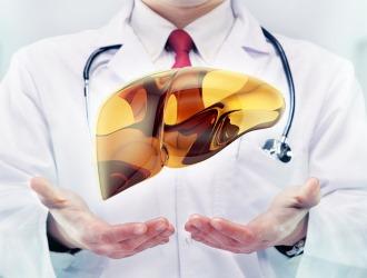 Lecitin för levern är oersättligt i alla åldrar. Det är en byggsten för detta organ, eftersom mer än 50% av levern består av lecitinderivat.