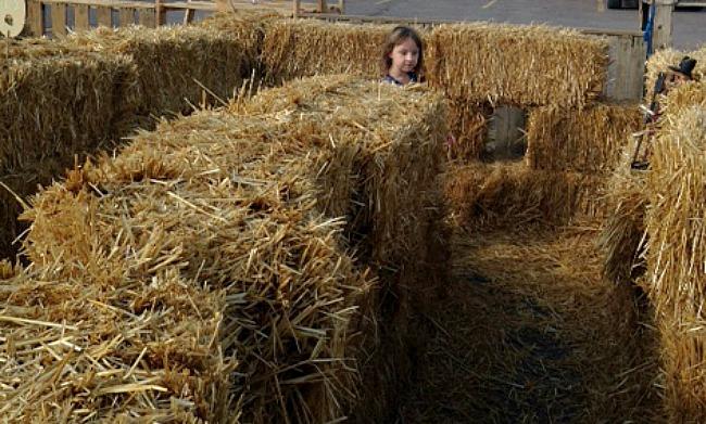 April hay maze
